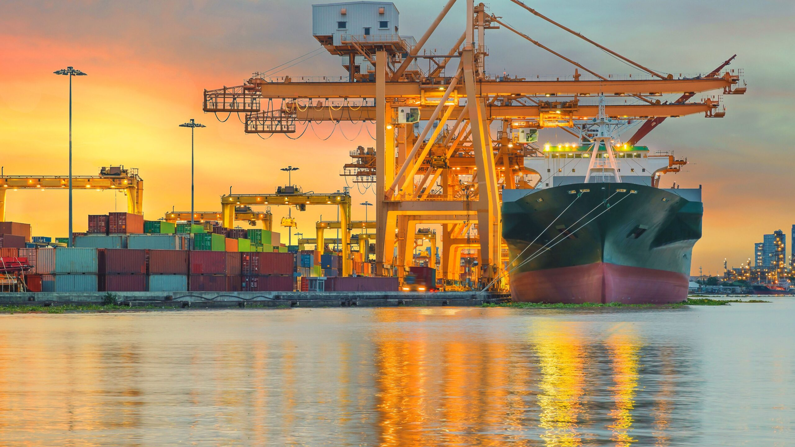 How to make a career in import export?